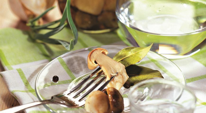 Рецепт Засолка грибов. Горячий способ
