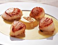 Рецепт Морские гребешки с соусом из шафрана и желе из лайма