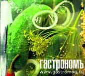 Рецепт Малосольные огурцы