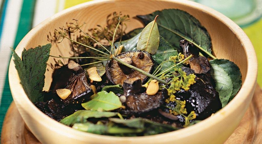Рецепт Засолка грибов. Холодный метод