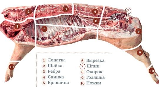 Выбор свинины: ребра на жаркое, ножки на холодец на Gastronom.