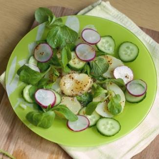 Рецепт Салат картофельный с редисом