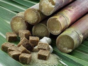 Как получают сахар из сахарного тростника