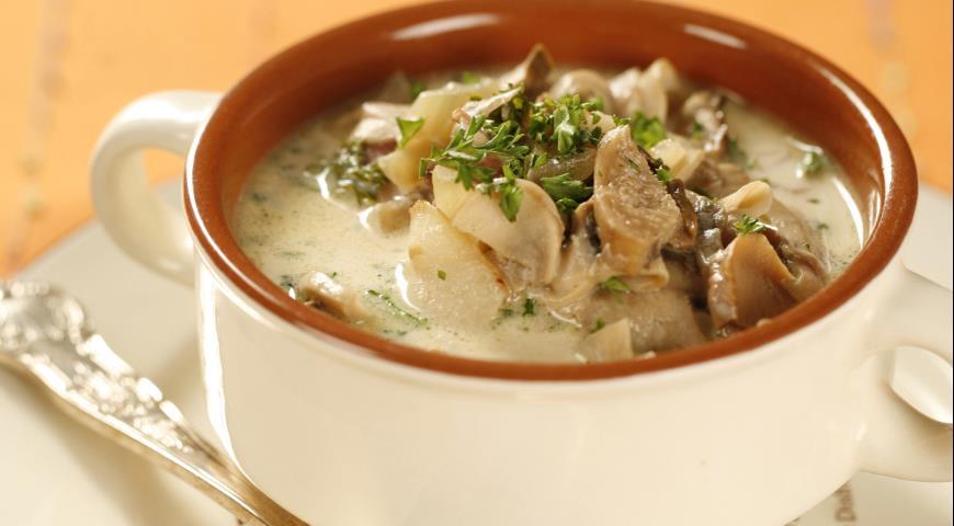 Рецепт Суп из шампиньонов и белых грибов