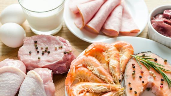 Белковая диета Аткинса — эффективный способ похудеть, отзывы, преимущества и недостатк