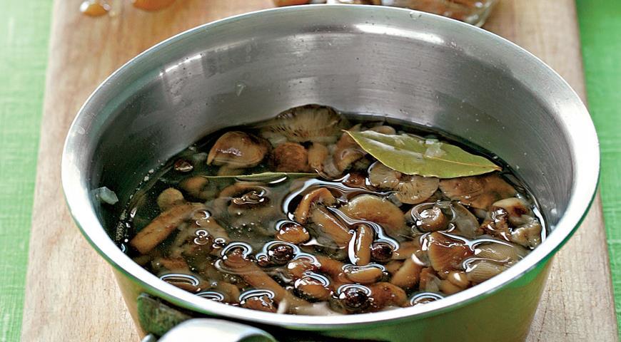 Рецепты маринованные грибы видео