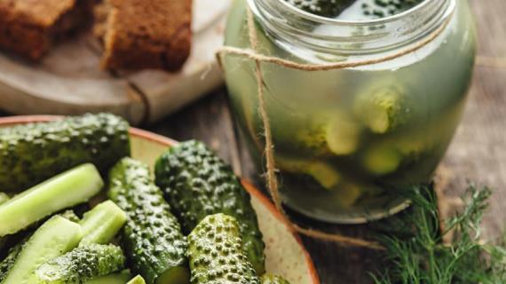 Рецепты соленых огурцов