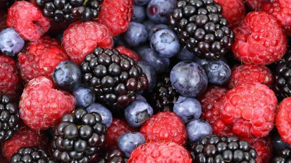 Фрукты. Ягоды, фрукты и соки. Полезные свойства и лучшие народные рецепты