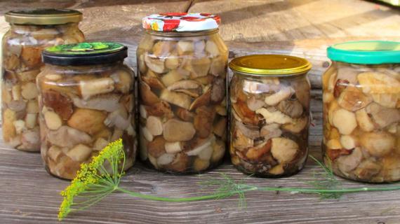 Как замариновать подберезовики на зиму пошаговый рецепт