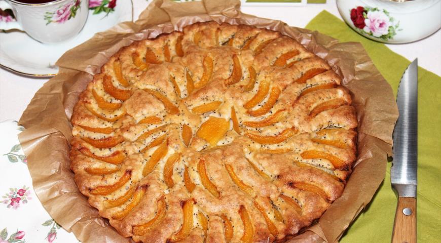 Рецепт Шарлотка с абрикосами и маком
