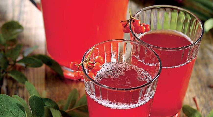 сок черноплодная рябина рецепты приготовления