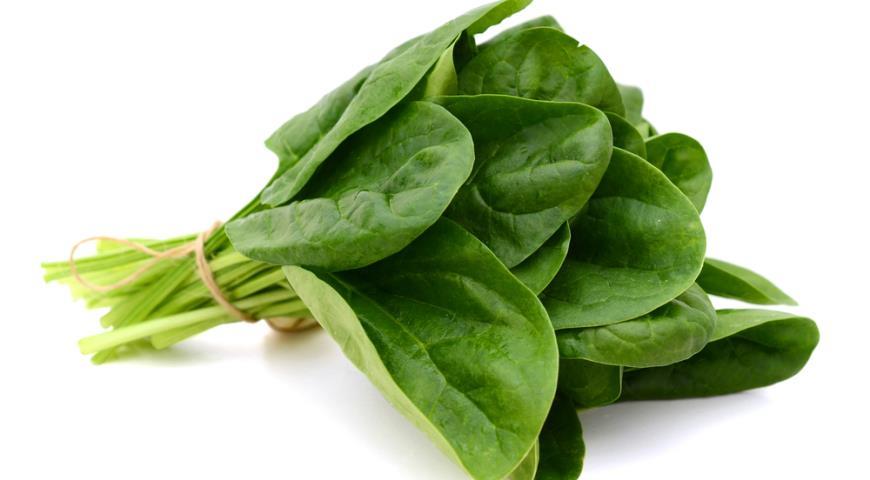 шпинат рецепты приготовления салаты фото