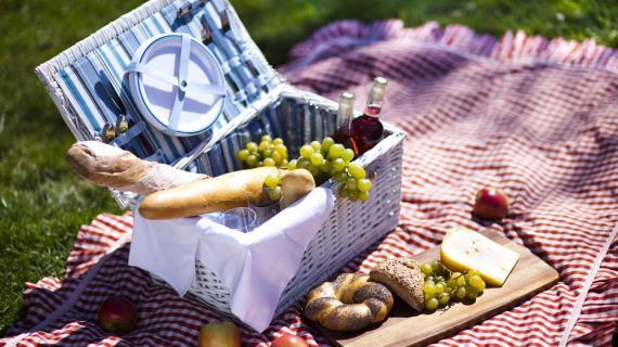 Съедобная посуда: на пути к улучшению экологии, бизнес идея || Съедобная и вкусная посуда для пикника