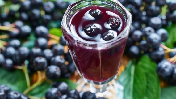 Приготовить настойку из черноплодной рябины на водке