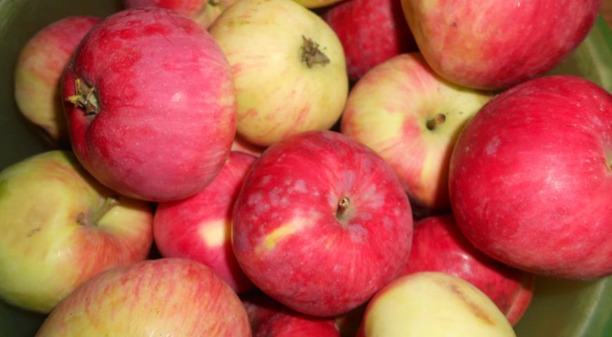 Яблочная пастила, пошаговый рецепт с фото