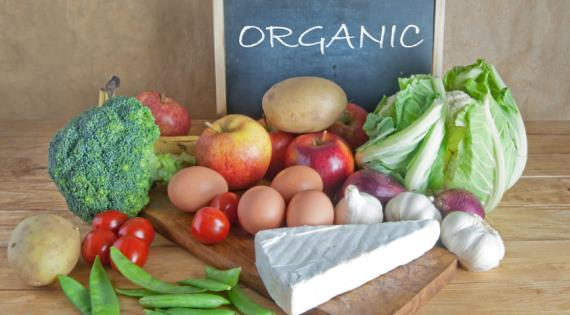 is organic food worth it essay You might think organic food would cost less than conventional food since the production is spared the cost of the chemicals, synthetic pesticides, and.