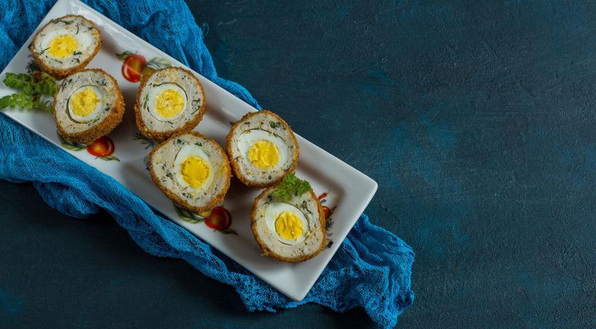 Яйца в мясной шубке и другие блюда для всей семьи из пасхальных яиц