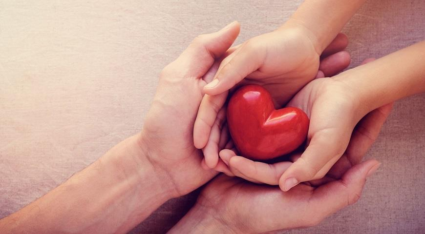 10 лучших продуктов для здоровья вашего сердца