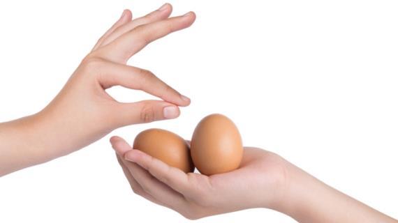Как правильно обращаться с яйцами