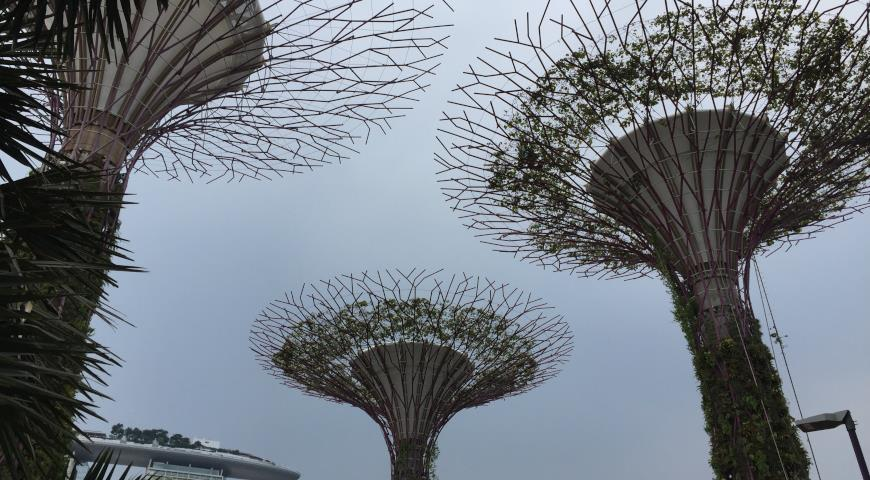Satay by the Bay, Сингапур