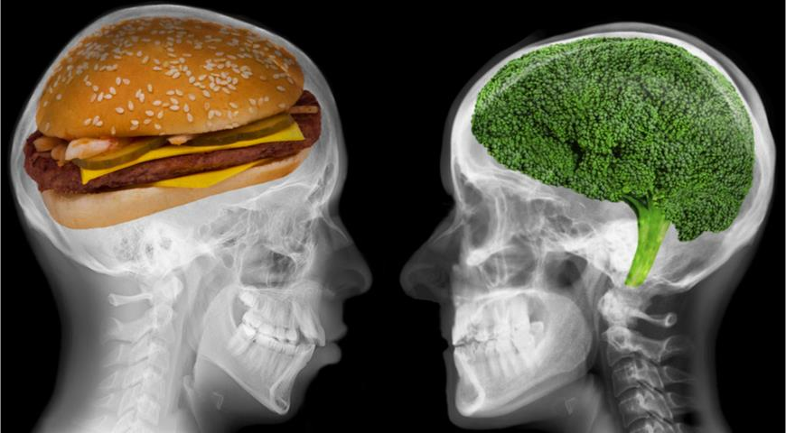 Диета для здорового мозга