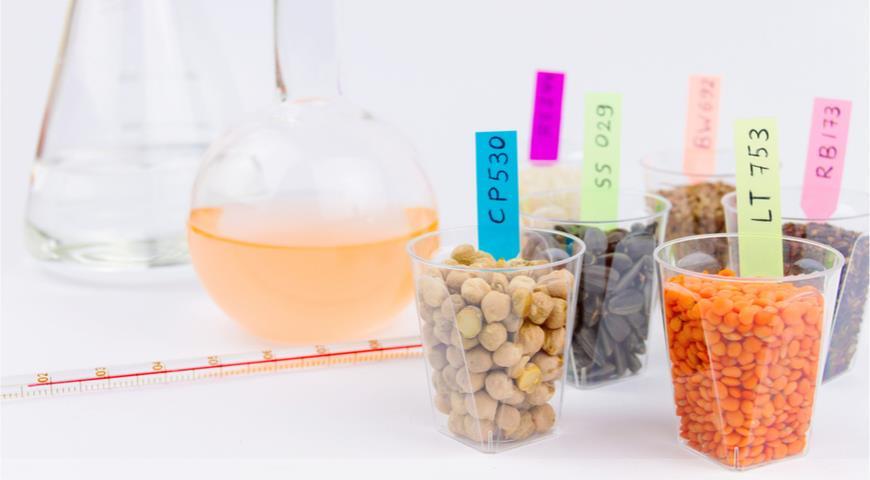 Минсельхоз разрешил ввоз ГМО