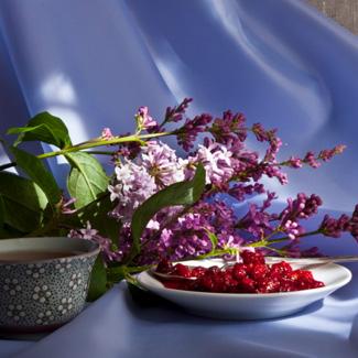 Рецепт Варенье из лесной малины
